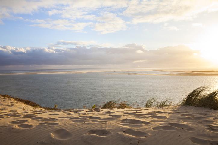 dune du pilat green walk