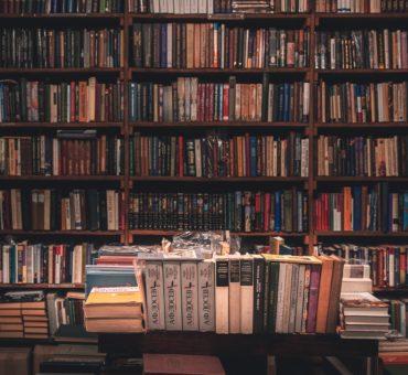 Les rats de bibliothèque, cet article est fait pour vous!